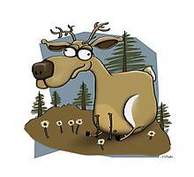 The Happy Deer Photographic Print