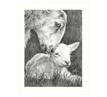 Mothering Ewe Art Print