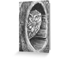 Twit-a-Who Greeting Card