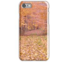 Fall in New England iPhone Case/Skin