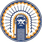 chief illiniwek  by dannigregory