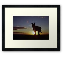 A New Hope! Framed Print