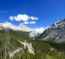 Canadian Rockies by Division