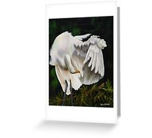 Belle Oiseau Greeting Card