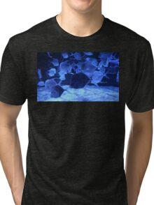 The Tank of Illusions Tri-blend T-Shirt