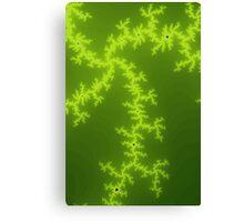 Green Fractal Canvas Print