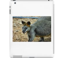 Wallaby, Kangaroo iPad Case/Skin