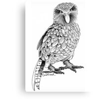 Kakapo - King of the Parrots Canvas Print