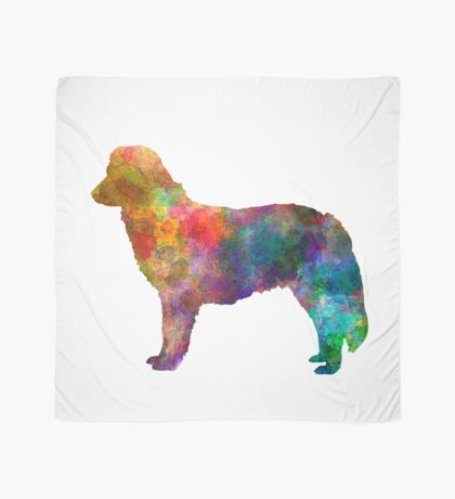Nova Scotia Duck Tolling Retriever in watercolor Scarf
