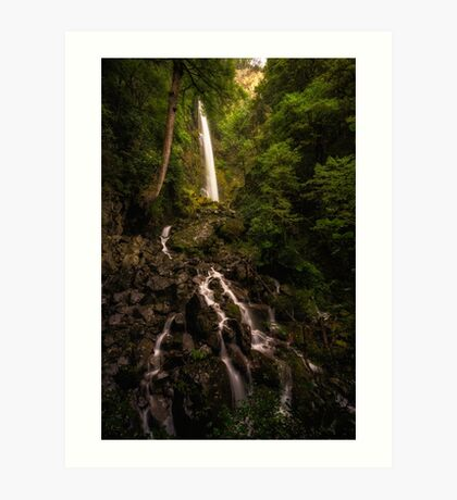 Whisky Falls - Lake Rotoiti - NZ Art Print