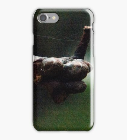 Nature approves, Forest cemetery iPhone Case/Skin