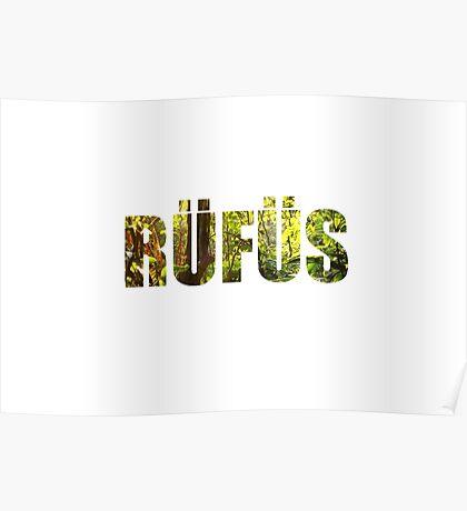 RÜFÜS / RÜFÜS DU SOL Poster