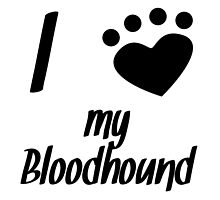 I Heart My Bloodhound by kwg2200