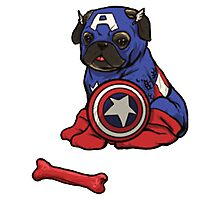 Captain Ameripug Photographic Print