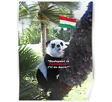 Special PANDA Souvenir directly from Budapest, Hungary Poster