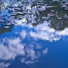 Cloud ripples by rom01