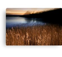 Faded Pond Canvas Print