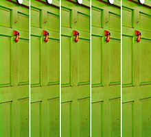 The Green Door With the Red Knocker by Scott Mitchell
