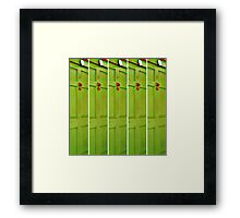 The Green Door With the Red Knocker Framed Print