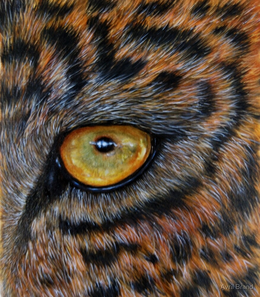 """""""Eye of the Leopard"""" - oil painting by Avril Brand"""