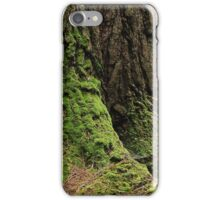 foundation of the forest iPhone Case/Skin