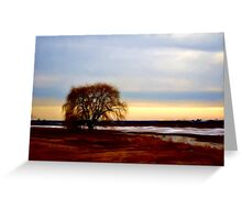 Willow at Sunset Greeting Card