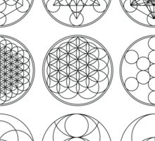 13 Circles of Sacred Geometry | FRESH Sticker