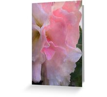 Ruffled Begonia - Digital Watercolor Greeting Card