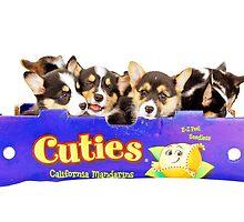 Cuties-Corgies by shambly