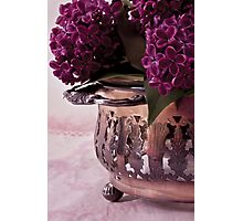 Lilac And Silver  Photographic Print