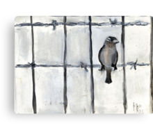Bird (On A Barbed) Wire Canvas Print