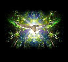 soaring by Lisa Torma