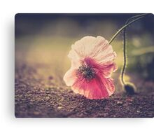 Fallen But Not Defeated Canvas Print