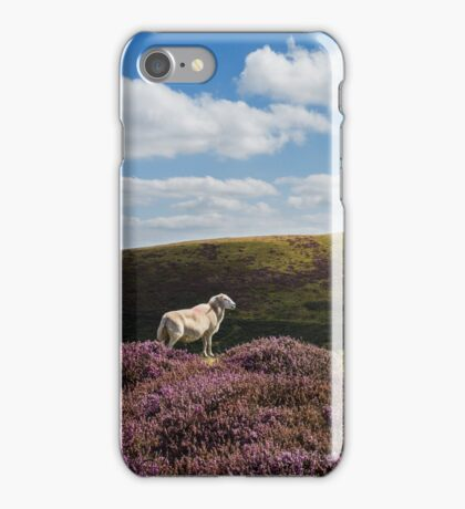 Hill Sheep iPhone Case/Skin