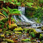 Horseshoe Falls by Paul Amyes