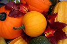 Pumpkins, Gourds and Maple Leaves by SummerJade
