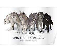 WINTER IS COMING- House Stark Direwolves Poster