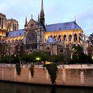 Notre-Dame de Paris by Rosalee Lustig