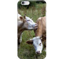 Bovine Buddies iPhone Case/Skin
