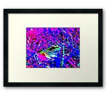 Psychedelic Frog Framed Print