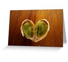 An Orange's Heart Greeting Card