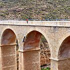 Bungee jumping in the Alpajarras by Sue Gurney