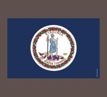 Virginia State Flag by USAswagg2