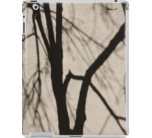 Serendipity - Playing With the Shadows iPad Case/Skin