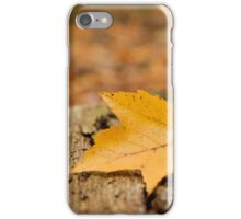 Closely Admired iPhone Case/Skin
