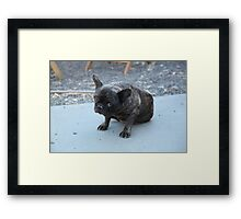 Hopefully Yours Framed Print