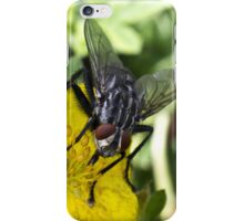 Sloven iPhone Case/Skin