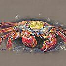 Feeling Crabby by Paul-M-W