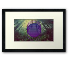 desolate forest  Framed Print