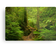 Magic Rainforest Metal Print